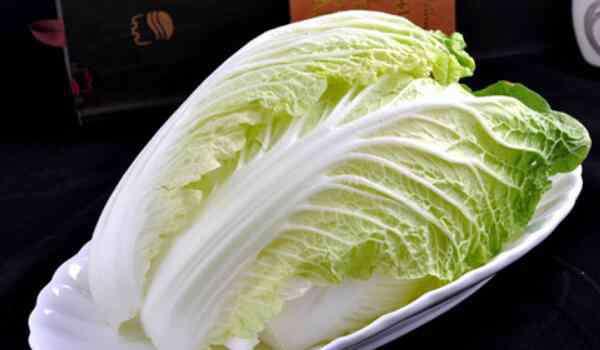 白菜热量 大白菜能减肥吗,能减肥(热量低/含大量的粗纤维)