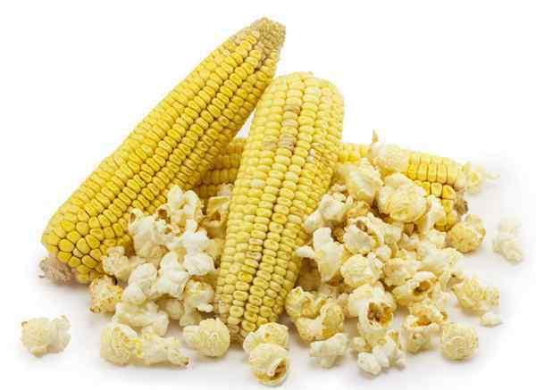 爆米花玉米和普通玉米的区别 爆米花的玉米是普通玉米吗?是否可以自己制作爆米花
