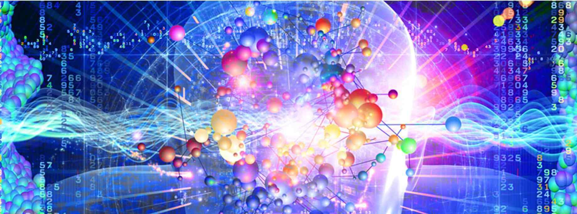 载体及构建 RNAi 载体设计与构建