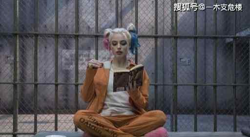 小丑女为什么叫布丁 为什么玛格特罗比演的小丑女那么火,系列电影评分却那么惨?